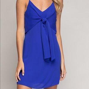 NWT Naked Zebra blue dress